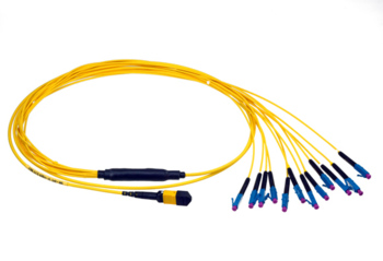 MTP Breakout Cable
